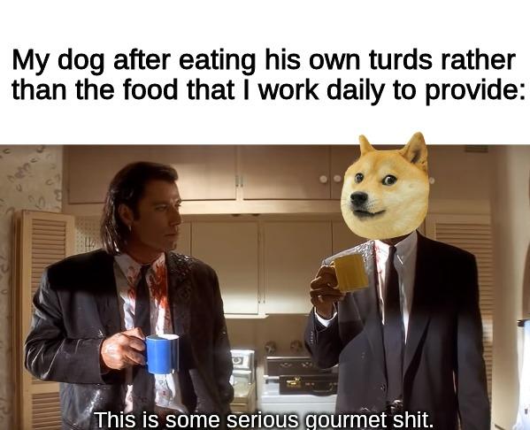 culinary dog - meme
