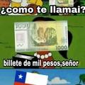 La moneda oficial de chile es la luka