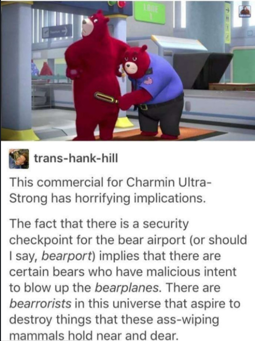 Another question: The bearport security guy has a uniform, but the other bear remains nude. Has America become nudist in this parallel universe? - meme