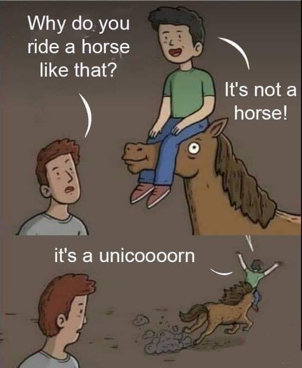 Unicorns & shit - meme