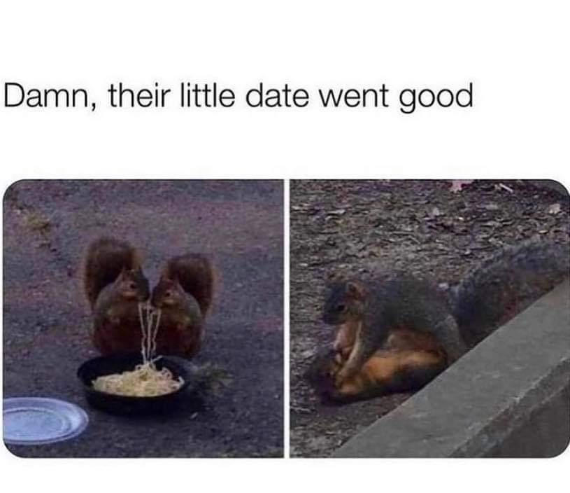 She got the nuts - meme