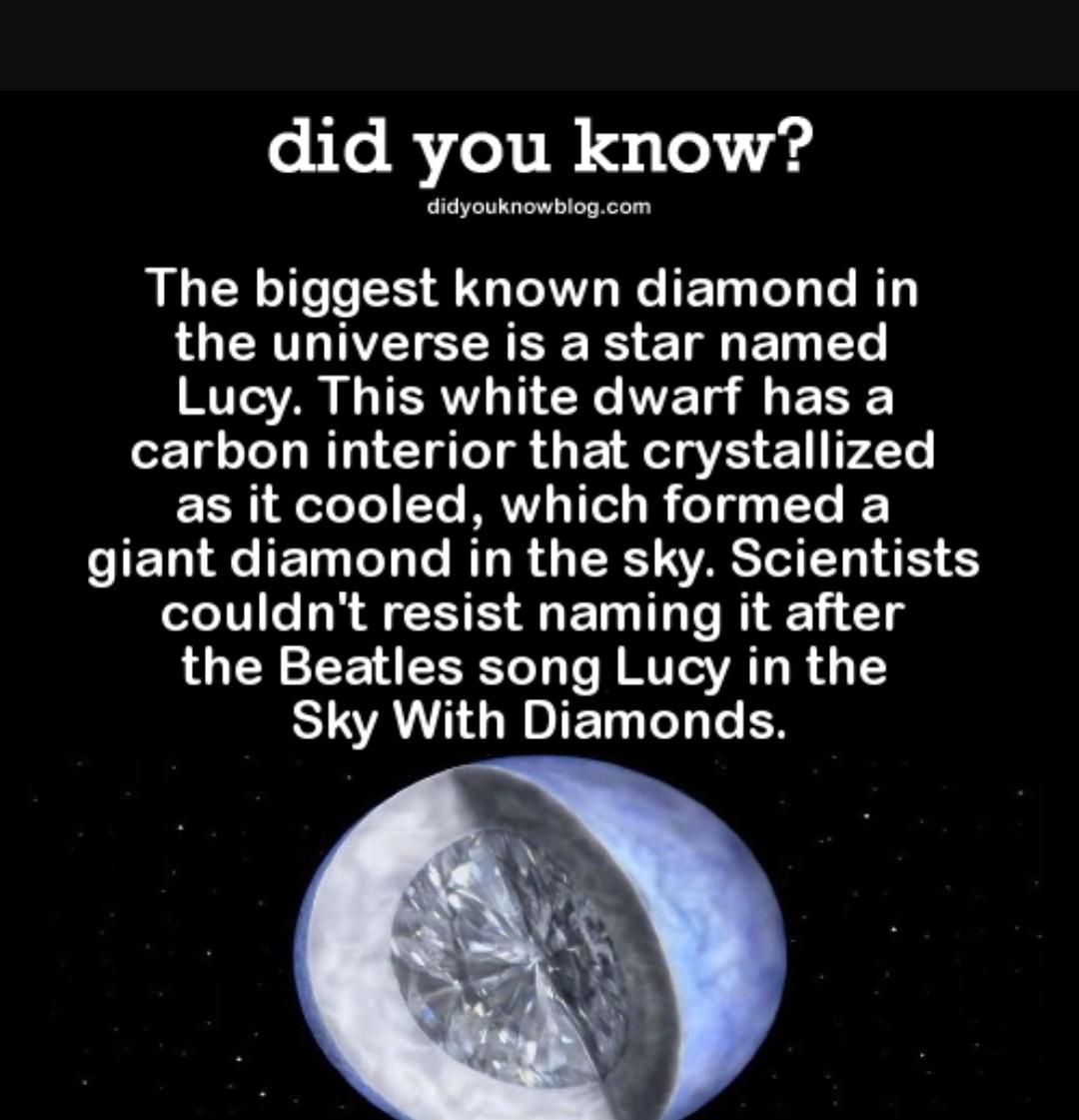 Lucy is rich - meme