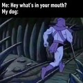Eu: oq é isso na sua boca      doggo: ...
