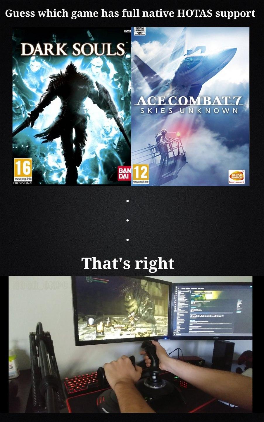 Dark Souls is the ultimate flight sim - meme