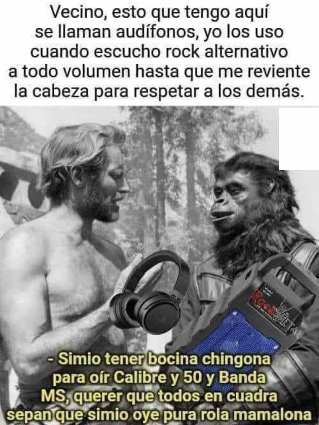 Bocina - meme