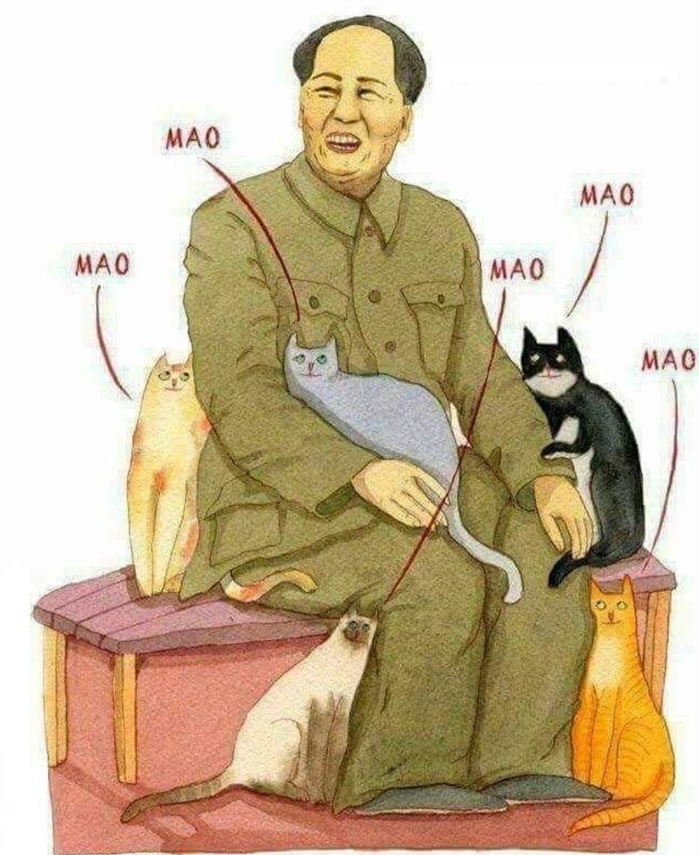 mao - meme