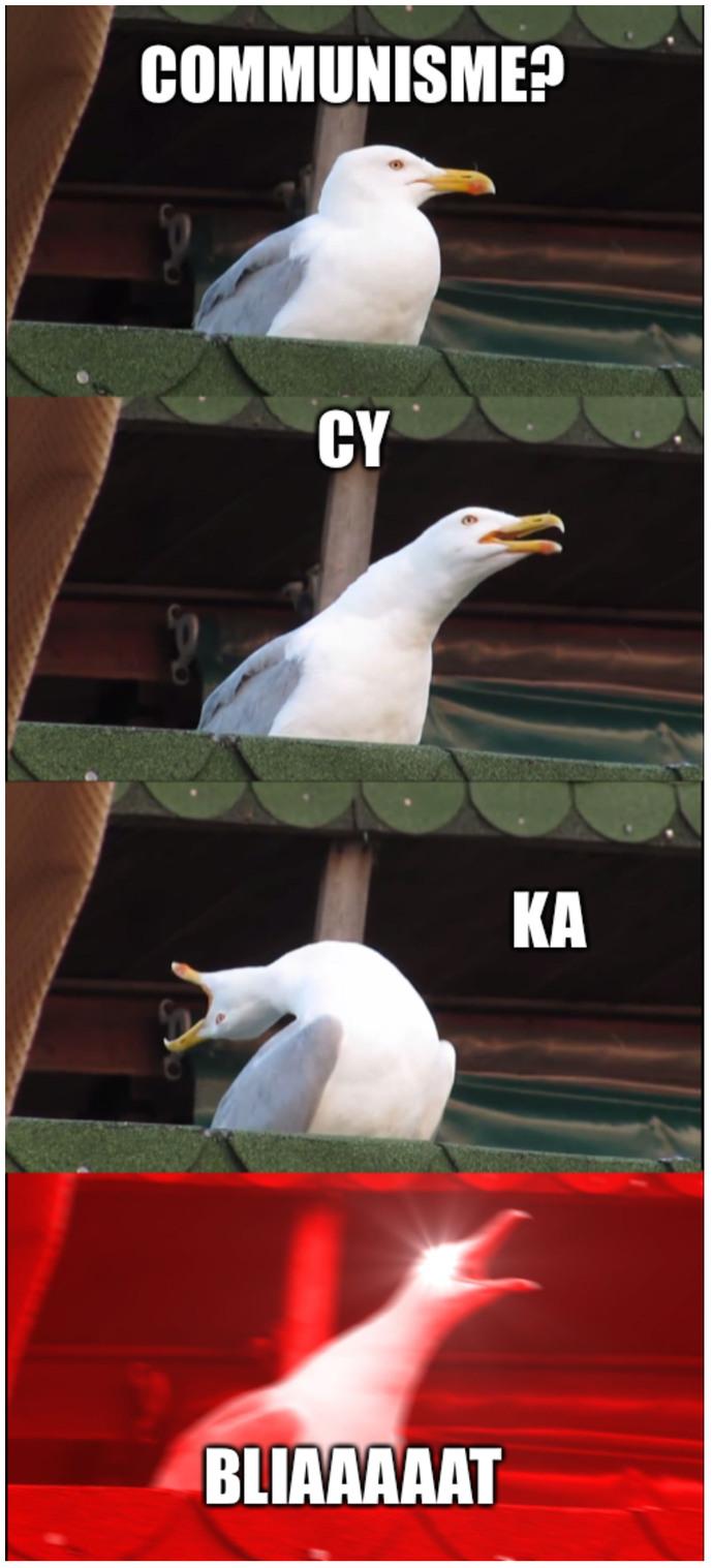RUSSIIIIAAA SINOOOVAAAA - meme