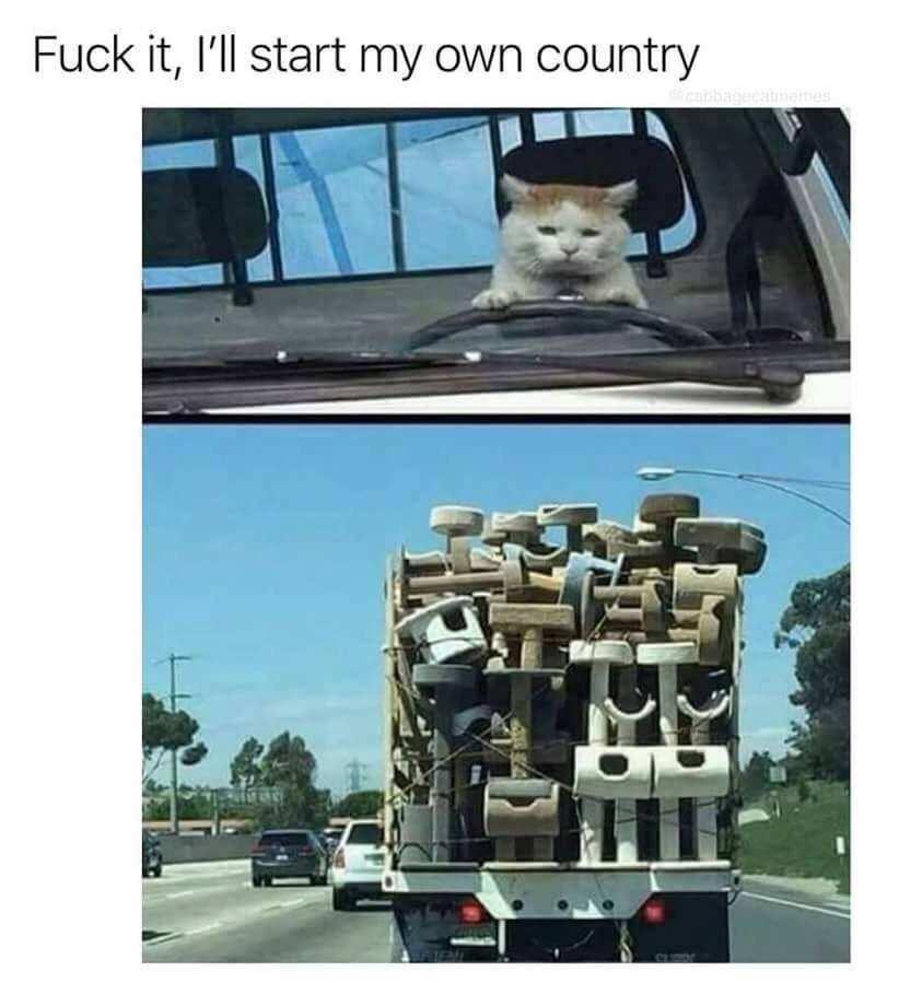 Can I visit? - meme
