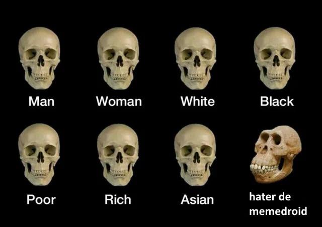 haters de chadroid - meme