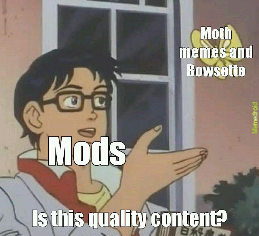 Please no more - meme