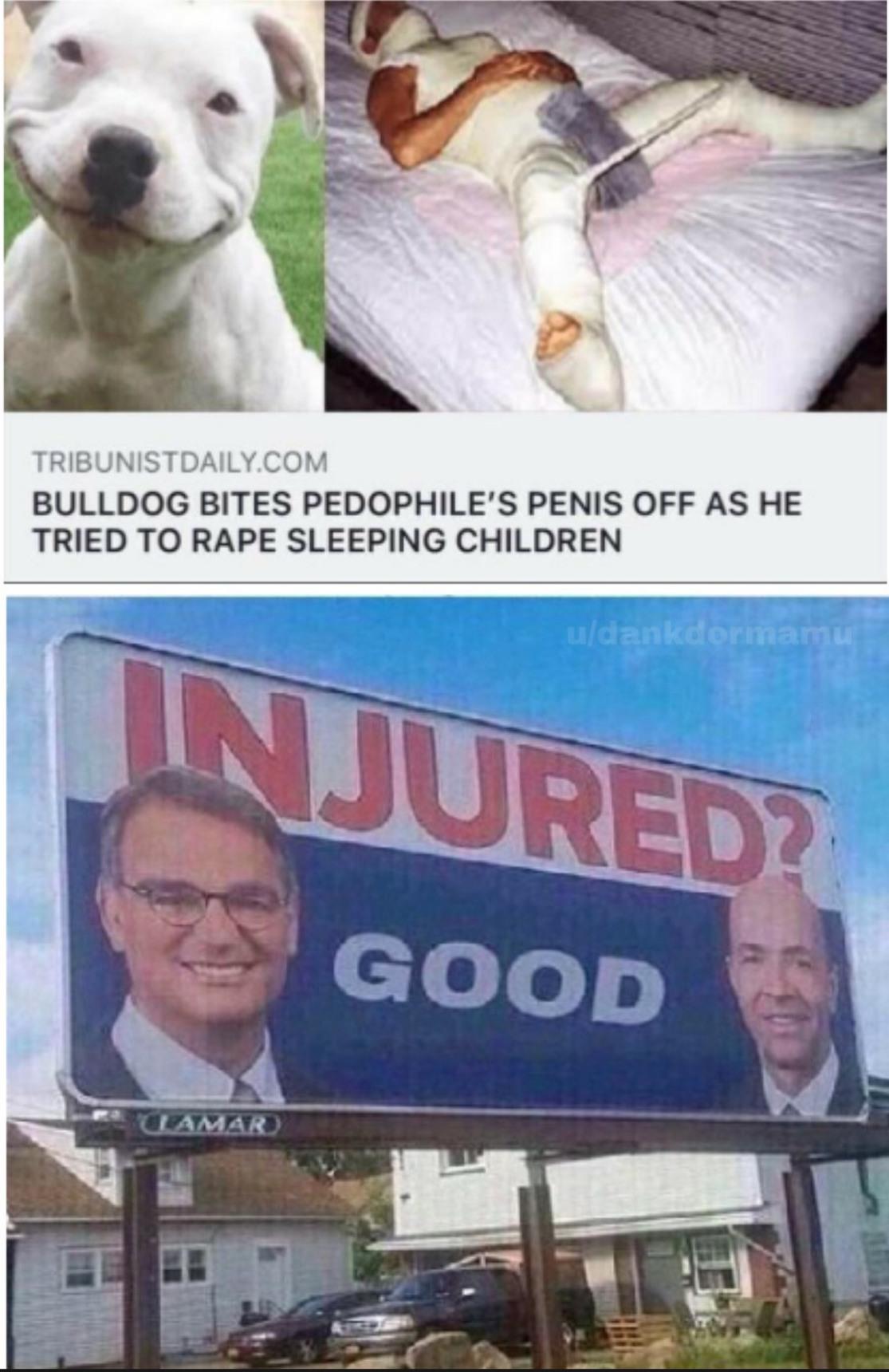 Ese Can es un héroe - meme