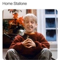 home Stallone