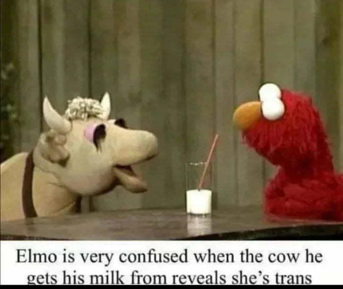 Poor Elmo. - meme