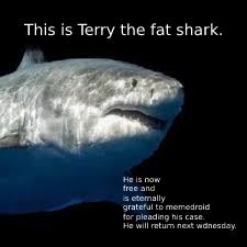 Terry's free! - meme