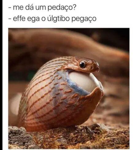 Kjk8kjkhkdd - meme