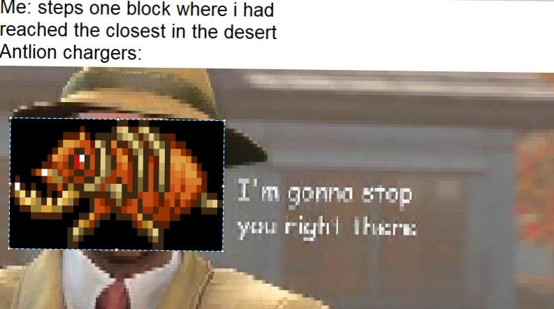 terraria meme