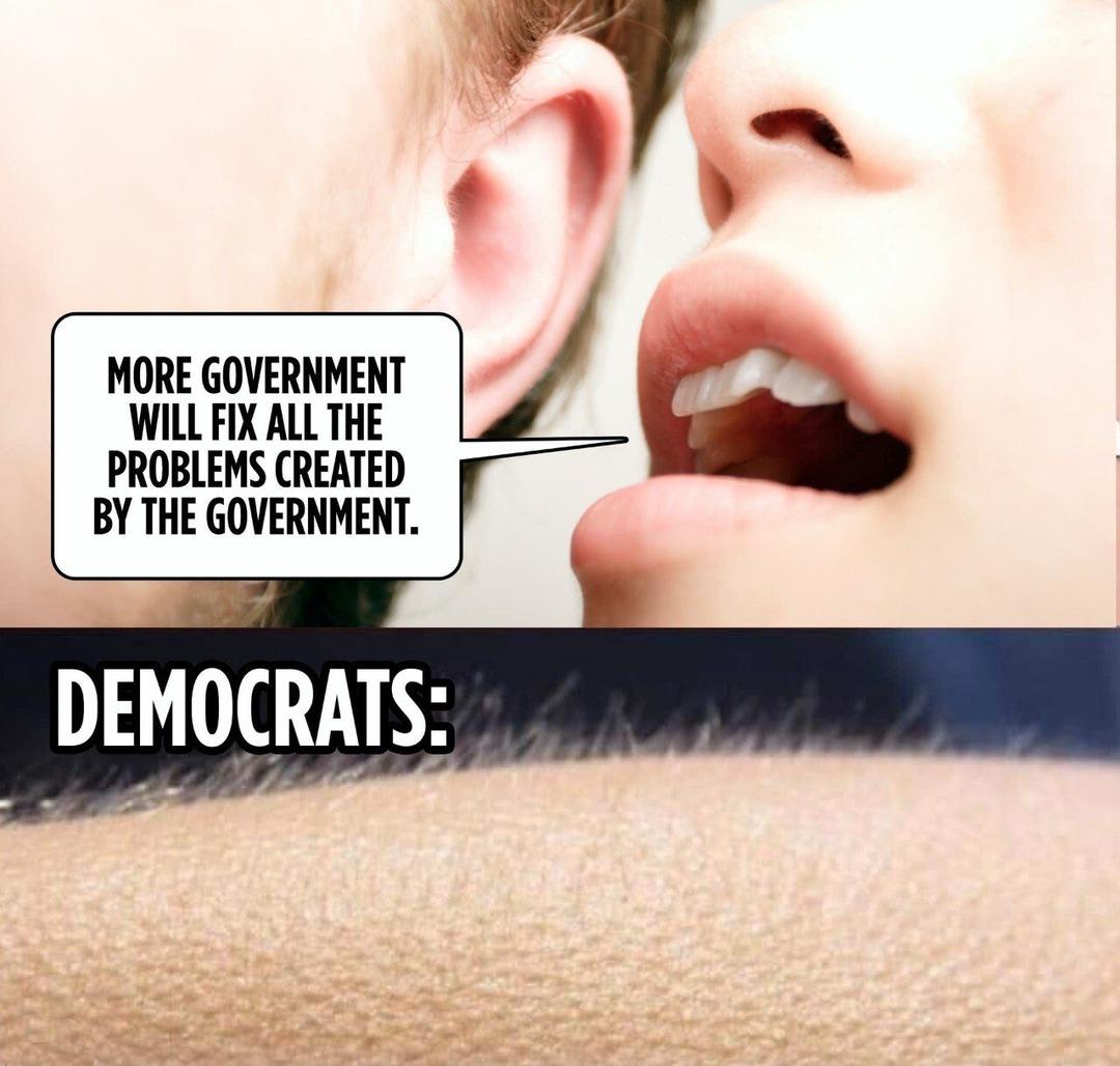 Government Worship - meme