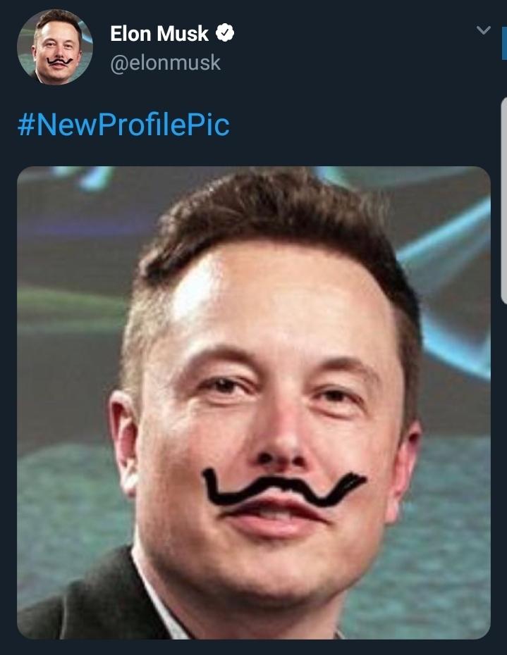 Elon musket - meme