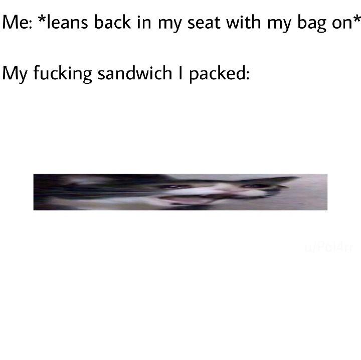 My sammich - meme