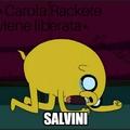 La reazione di Salvini