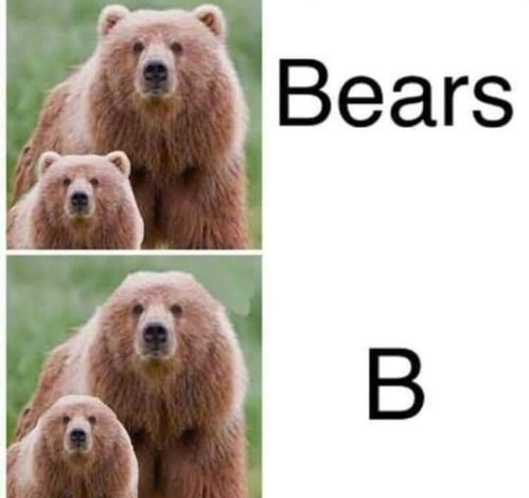 The Bear - meme