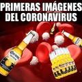 Coronaviru'