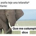 Un elefante se balanceaba sobre la tela de una araña... Que xuxa