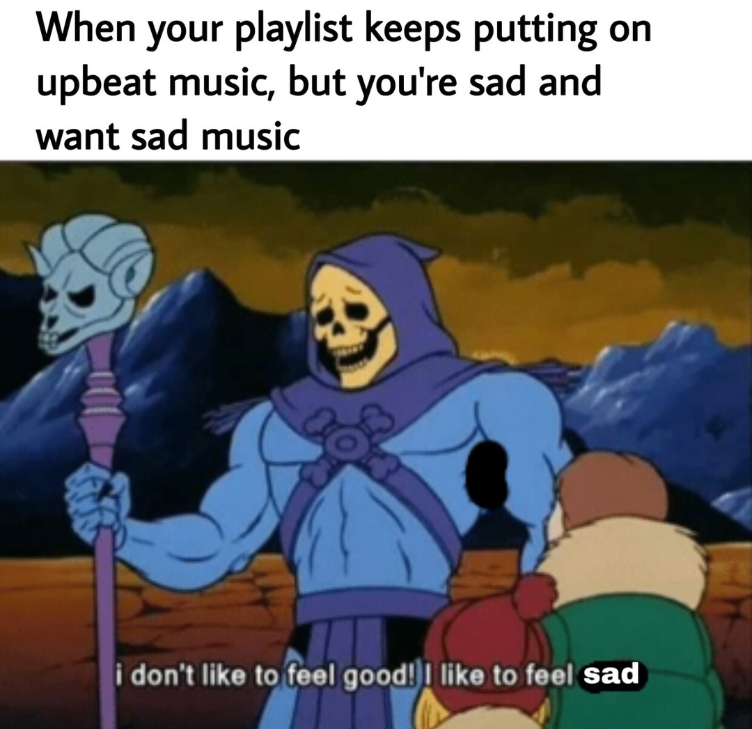 That's why I have a whole playlist of sad songs - meme