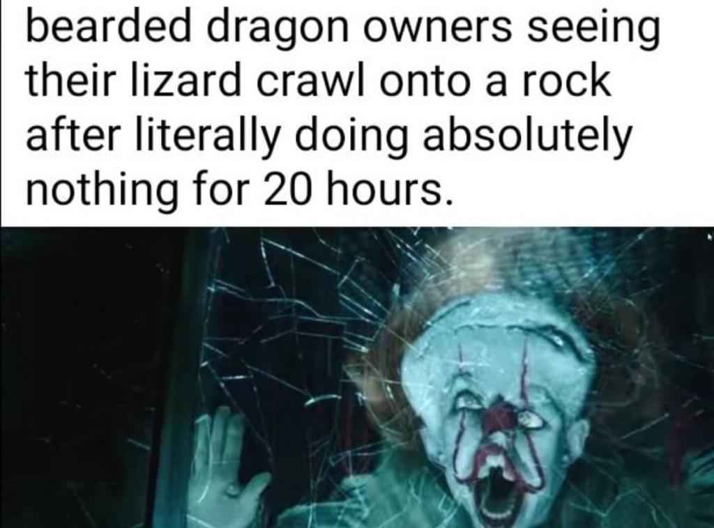 Its too true - meme