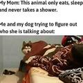 Shut up mom......