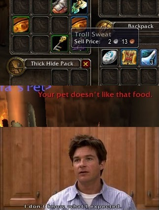 We've all done it as hunters on WoW with one item or another - meme
