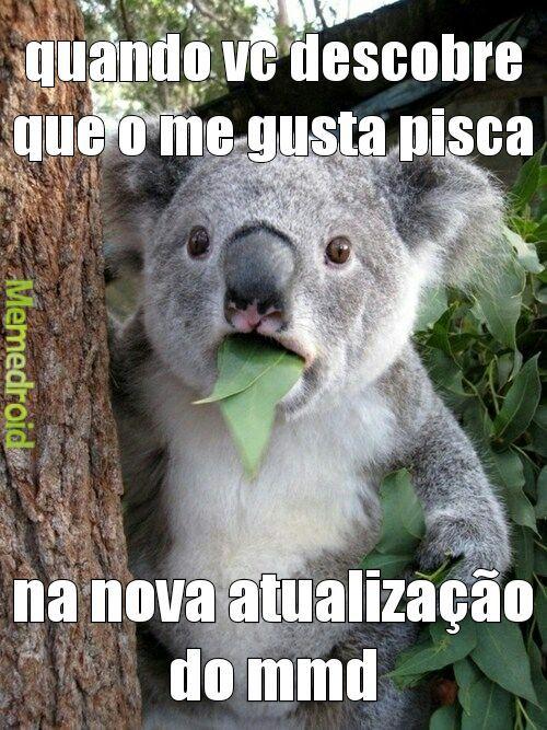 panque meu koala com sua perna esquerda - meme