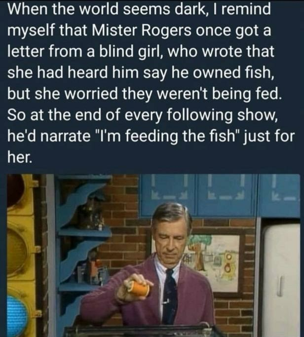 Loved Mister Rogers as a kid - meme