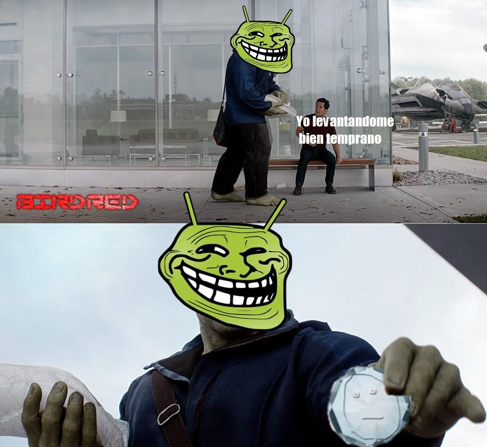 pajarito madrugon - meme