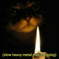 Catto candle