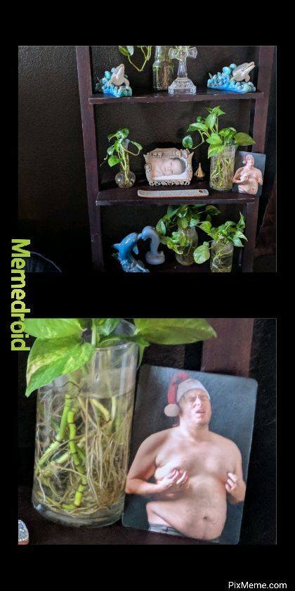 Hidden object at moms house - meme