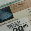 The niger trigger