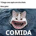 Gatubarão