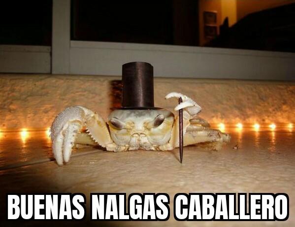 Don cangrejo elegante :pukecereal: - meme