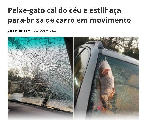 PORRA FLASH CAGOU A LINHA DO TEMPO DE NOVO - meme