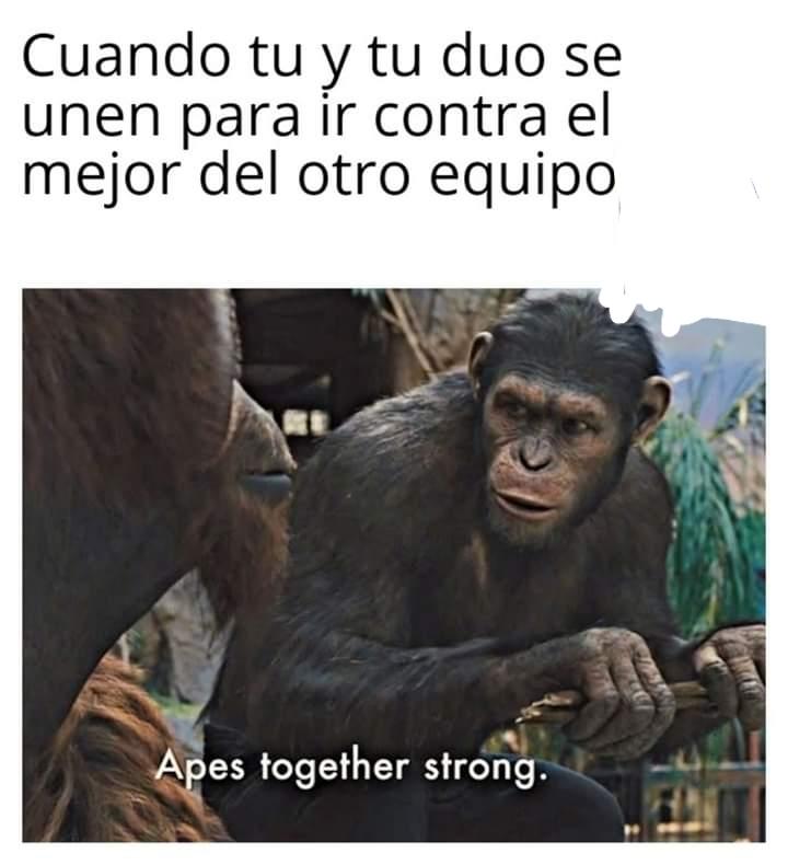 simios estupidos - meme