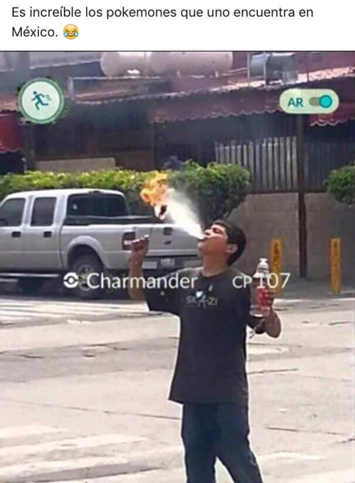 Charizar yo te elijo - meme