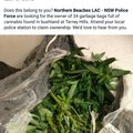 Nsw police force killing it recently.