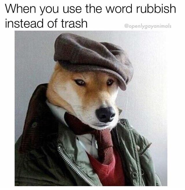 When you use the word rubbish instead of trash - meme