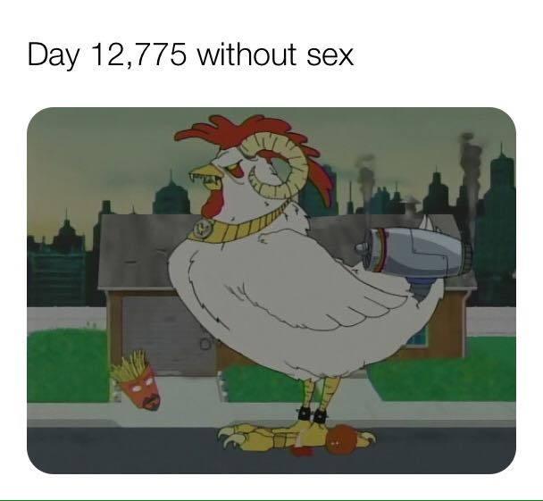 12,775 days = 35 years - meme
