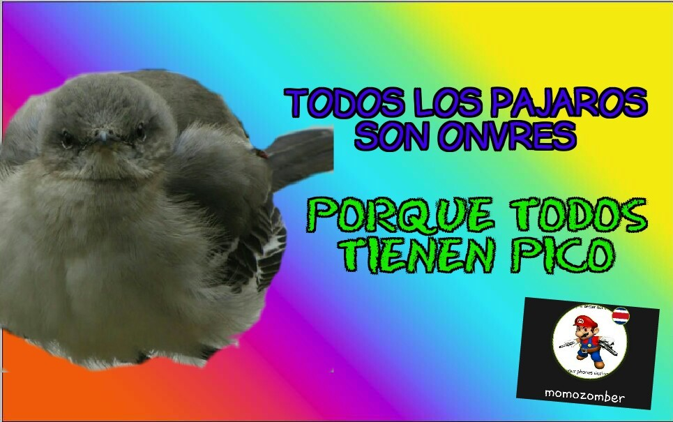 ARRRRRRIBA EL PATRIARCADO - meme