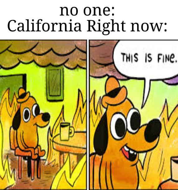 fires - meme