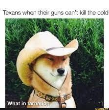 Texans when their guns can't kill the cold - meme