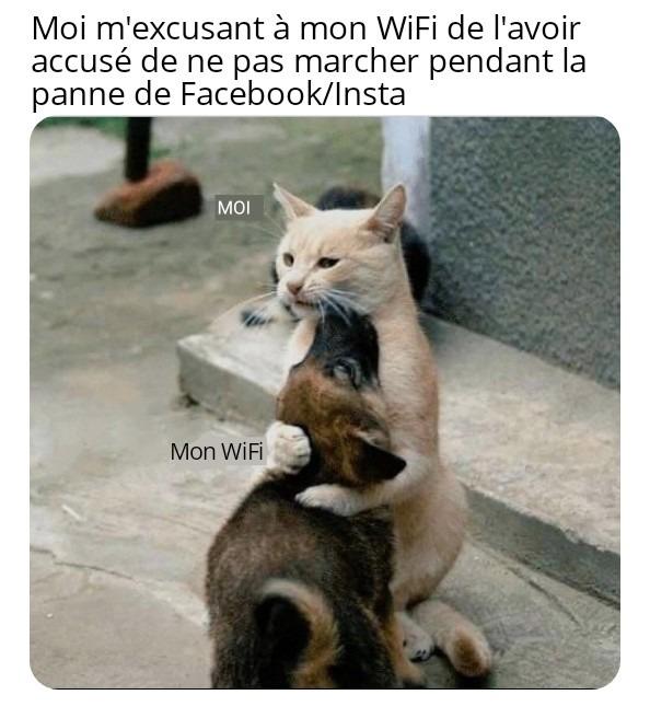 Chat - meme