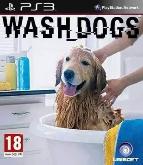 Wash dogs - meme